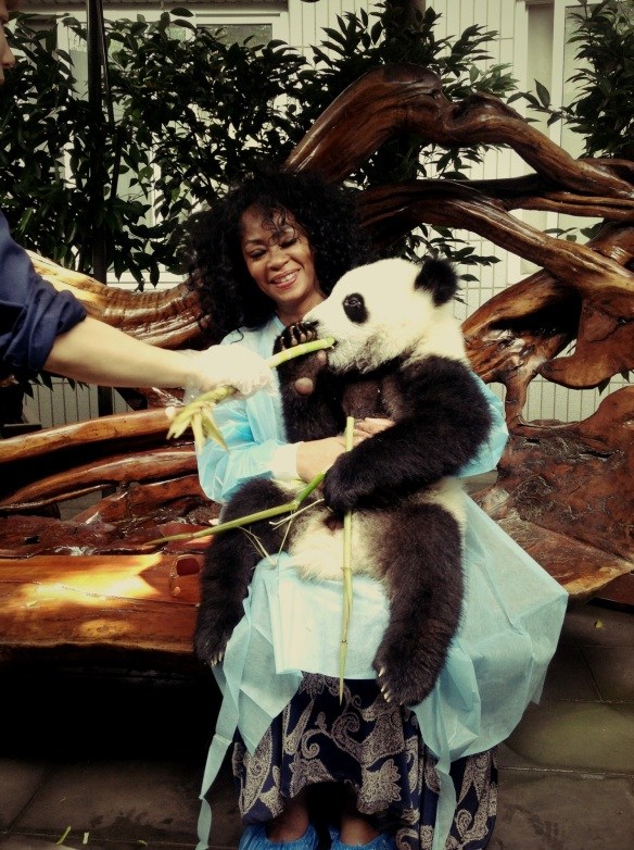 At Sunshine Panda Nursery on the Panda Tour, Chengdu.