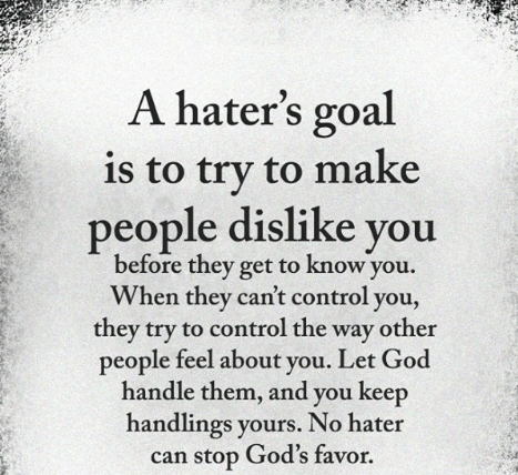 a-haters-goal-is-to-try-to-make-people-dislike-25871769